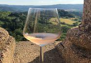 /wineshowtodi